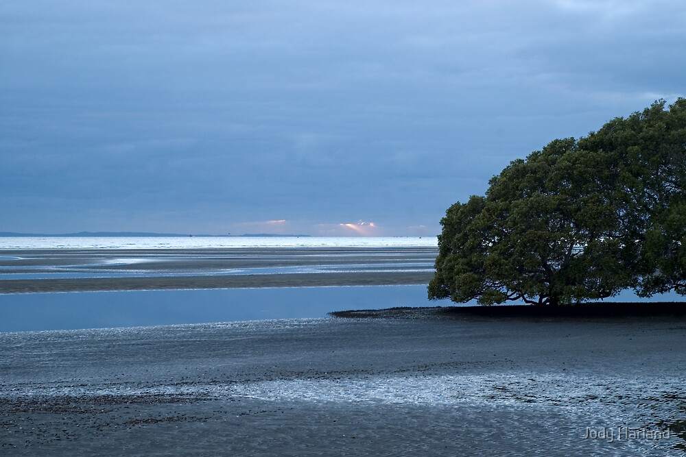 Dawn at Nudgee Beach by J Harland