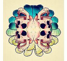 The Human Virus Photographic Print