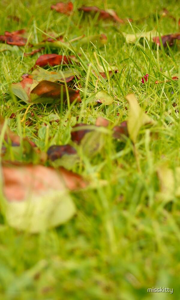 autumn by misskitty