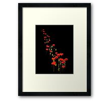 The March of the Poppies Framed Print