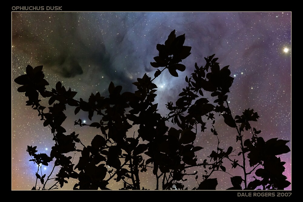 Ophiuchus Dusk by dale rogers