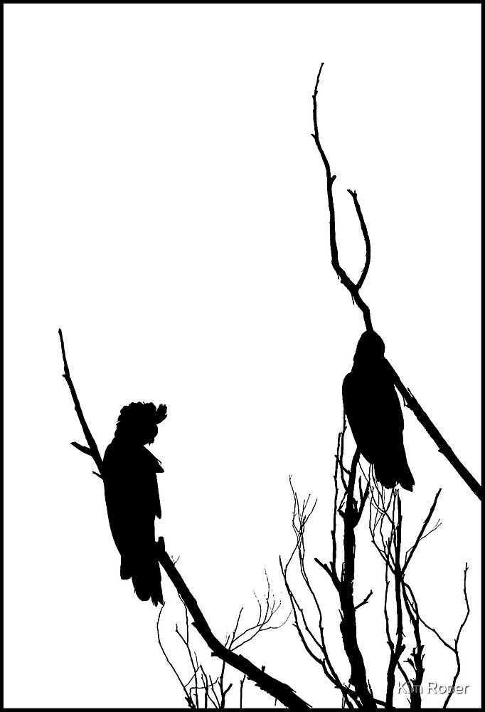Winter Silhouette - Black Cockatoos by Kim Roper