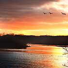 February Sunset on the Flyway by Nadya Johnson