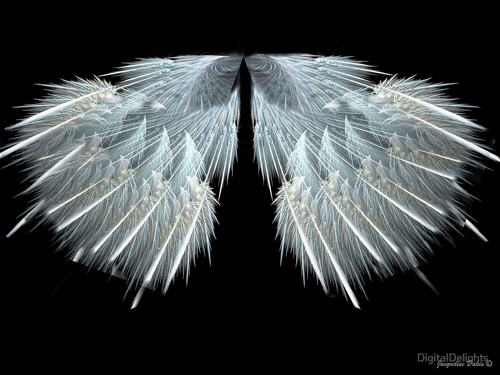 Angel Wings by DigitalDelights