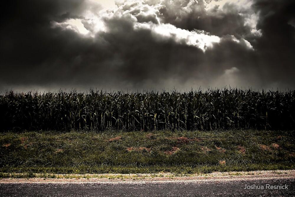 Corn Apocalypse by Joshua Resnick
