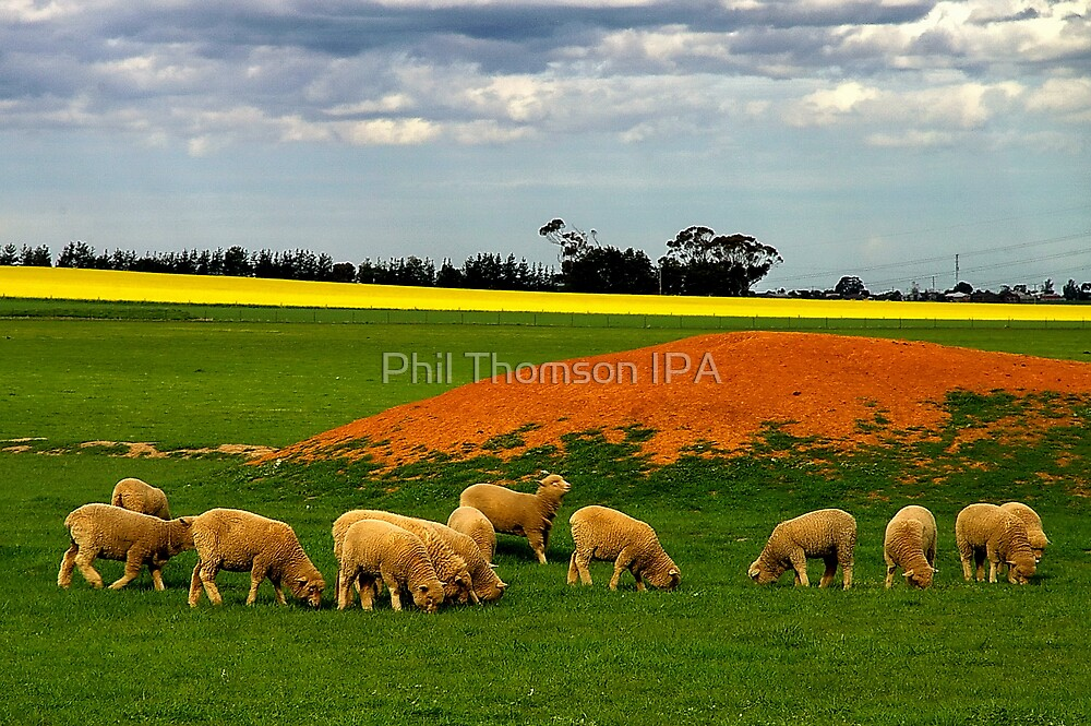 """Grazing"" by Phil Thomson IPA"