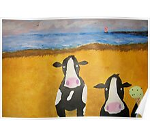 Cows at the Beach Poster