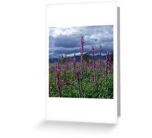 Lupine and Desert Storm Greeting Card