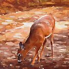 Whitetail Deer by Nazareth