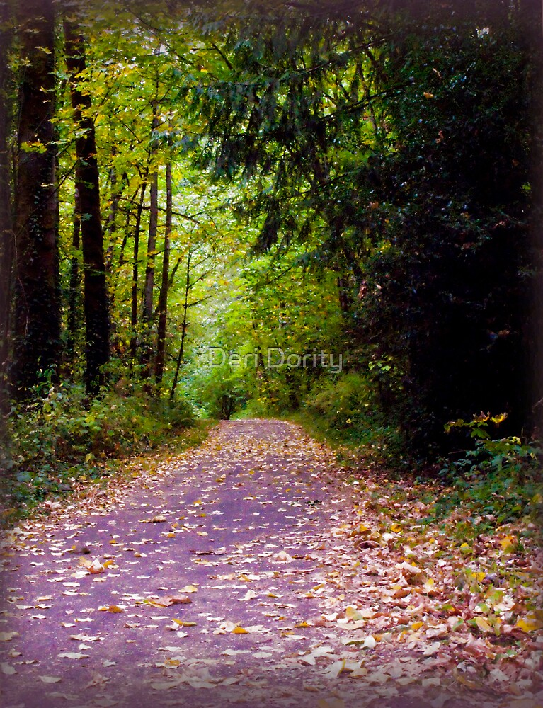 The Path by Deri Dority