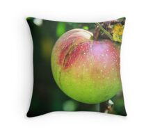 Country Apple Throw Pillow