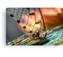 Gold on the Diamond Canvas Print