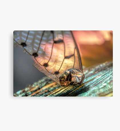 Gold on the Diamond Metal Print