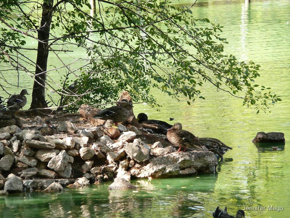just ducky by Jennifer Mayo