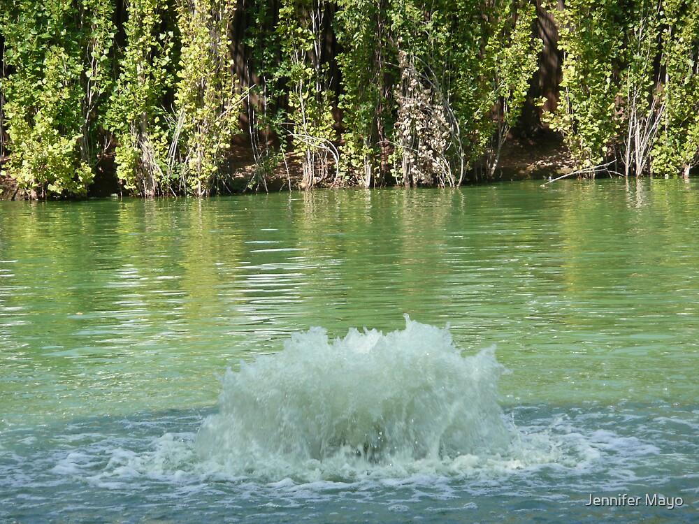 fountain by Jennifer Mayo