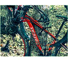 Bike by Wilderness  Photographic Print