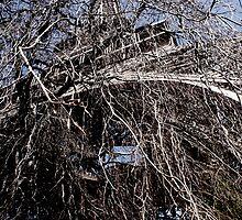 Eiffel Tree by hannahmay