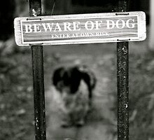 Beware of Dog by hannahmay