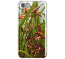 a tiny treasure hidden in tall grass iPhone Case/Skin