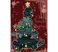 Merry terrapin Christmas Photographic Print