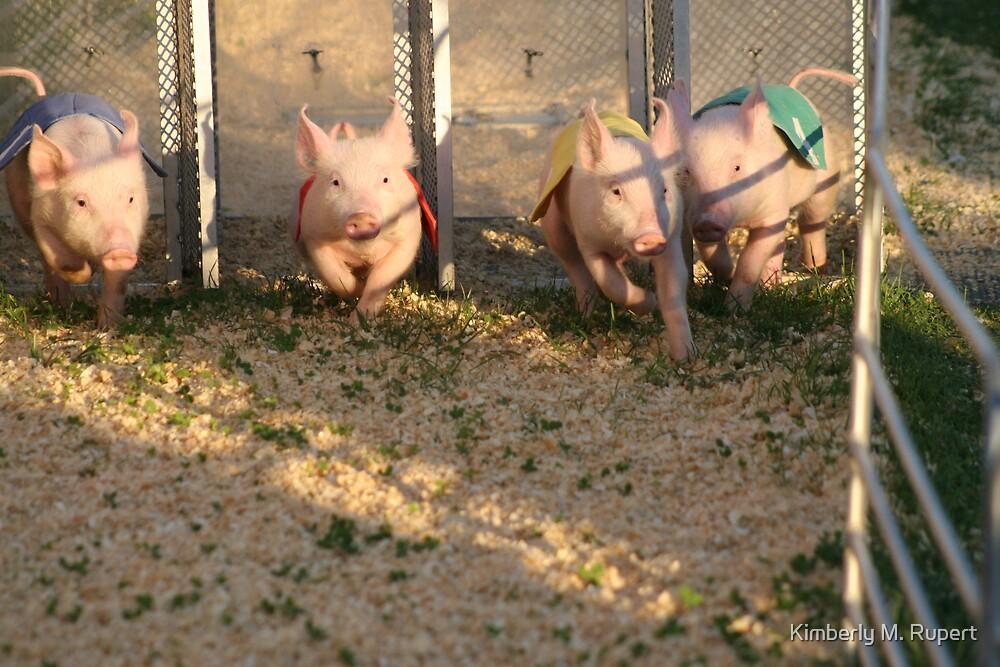 Piggy Race by Kimberly M. Rupert