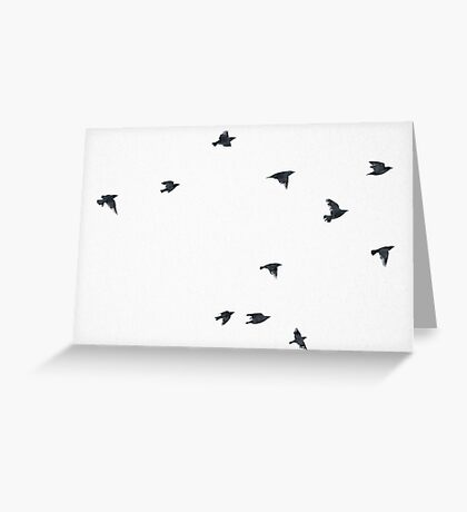 The Raven - Birds in Black and White Greeting Card