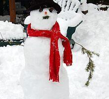 HO, HO, HO, ITS MR. SNOWMAN by MsLiz