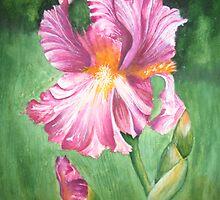 Maroon Iris # 100 by Rebecca Wadle