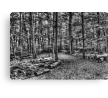 Forest 4 Canvas Print