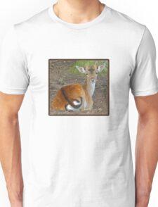 Baby Buck Tshirt Unisex T-Shirt