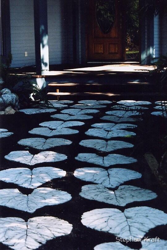 Designer Stepping  Stones  by Stephan  Kraft
