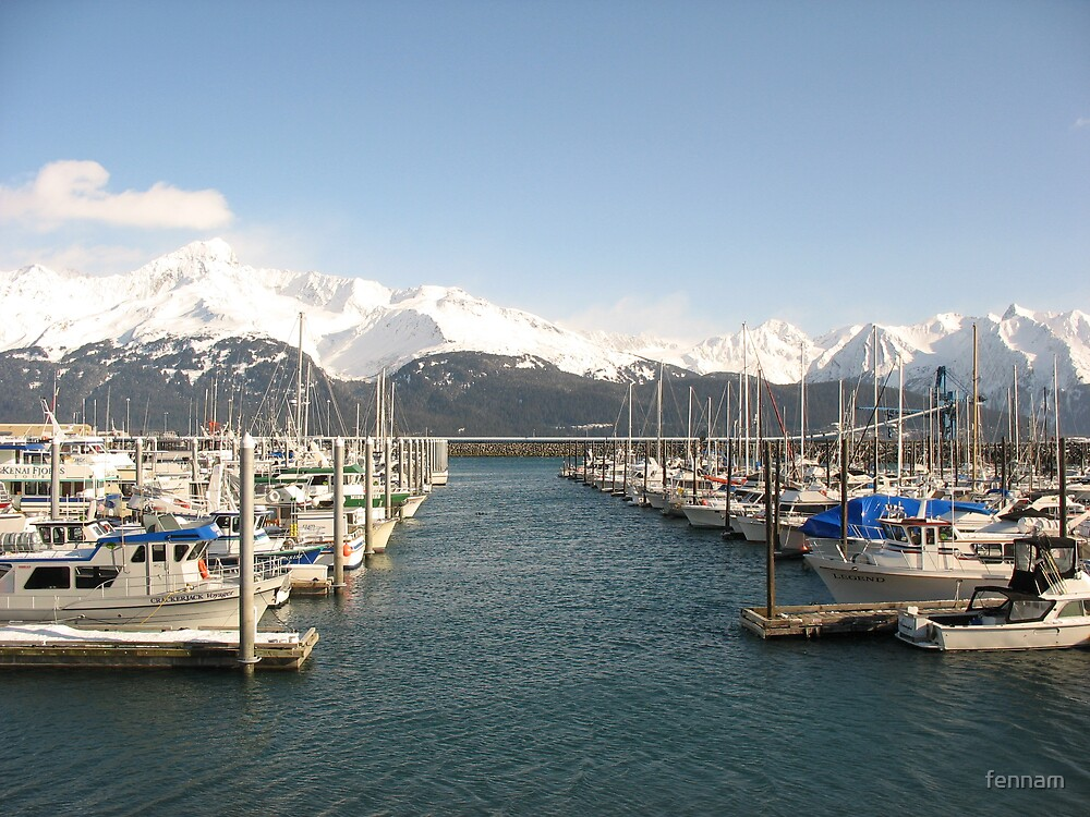 Alaska Seward Bay with Beautiful Mountains by fennam