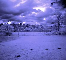 My little town in IR by Jeffrey  Sinnock