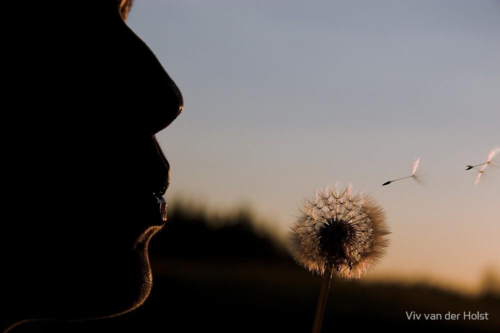 dandelion by Viv van der Holst