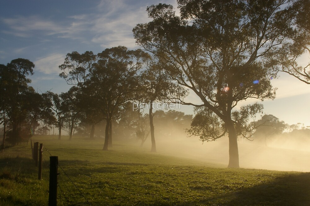 A foggy start by pmitchell