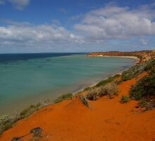 Near SkipJack Point, Francois Peron National Park, WA by pmitchell