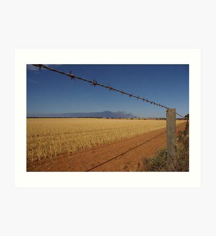 Distant bushfire smoke, The Riverland, SA Art Print
