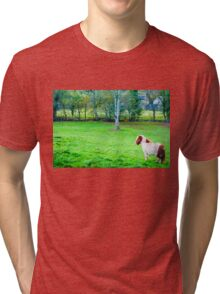White chestnut pony horse in green grass field, copy space available Tri-blend T-Shirt