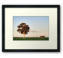 Under Pastel Skies Framed Print