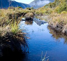 Cradle Mountain by Alex Wise