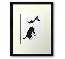 Bull Terrier and the Beast Framed Print