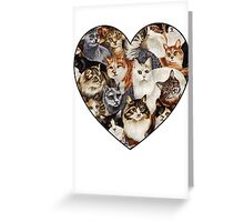 All The Kitties Greeting Card