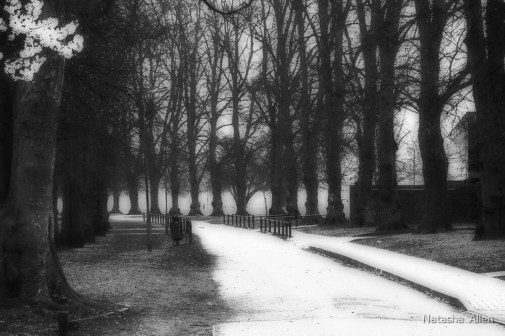 Rothamstead Park, Harpenden, England by Natasha  Allen