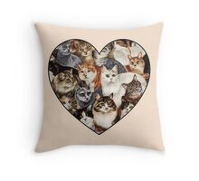 All The Kitties Throw Pillow