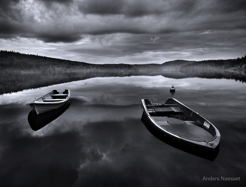 Abandonment by Anders Naesset