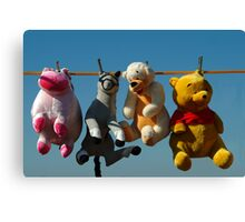 HANG 'EM HIGH (Not much Hunny up here!) Canvas Print