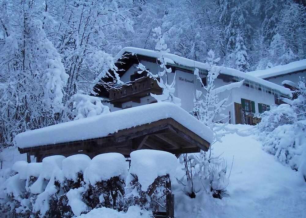 Snow house by odeliska