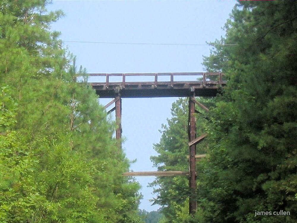 WOOD BRIDGE by james cullen