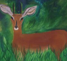 Deer in a Field by jessyanne
