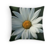 White & Black Throw Pillow